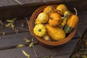 Autumn Pumpkins and Gourds — Stock Photo
