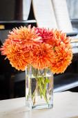 Dahlia Bouquet — Foto Stock