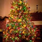 Christmas Tree — Stock Photo #54158113