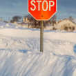 Winter Stop Sign — Stock Photo #55497821