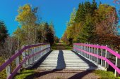 Trans Canada Trail — Stock Photo