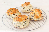Homemade Biscuits — Stock Photo