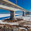 Confederation Bridge — Stock Photo #59519207