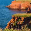 Island Cliffs — Stock Photo #59519399