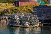 Newfoundland Lobster Traps — Stock Photo