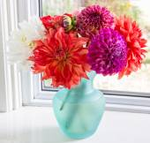 Dahlia Bouquet — Stock Photo