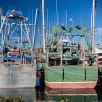 Newfoundland Fishing Boats — Stock Photo #72271799