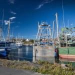 Newfoundland Fishing Boats — Stock Photo #72271811