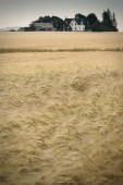 Vintage Farmstead — 图库照片