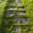 Flagstone Walkway — Stock Photo #73069987