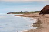 Prince Edward Island Beach — Stock Photo