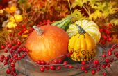 Thanksgiving decoration — Stockfoto
