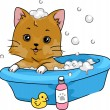 Cat Taking a Bath — Stock Photo #58947319