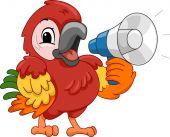 Parrot Using a Megaphone — Stock Photo
