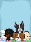 Adorable Puppy Background — Stock Photo