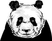 Black and White Panda — Stock Photo