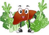 Healthy Liver Mascot — Foto Stock