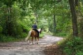 Man Horseback Riding — Stock Photo