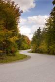 Winding Road During Autumn Season — Stock Photo