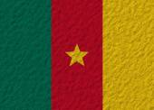 Cameroon flag stone — Stock Photo