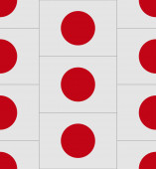 Japan flag texture vector — Stock Vector