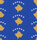 Kosovo flag texture vector — Stock Vector