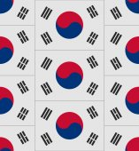 South Korea flag texture vector — Stock Vector