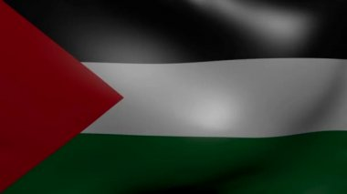 Palestine strong wind flag — Stock Video