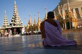 Biddende monnik op Shwedagon pagoda — Stockfoto