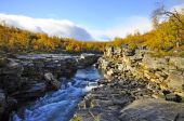 River in autumn — Stock Photo