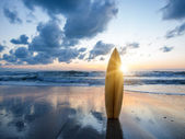 夕暮れ時のビーチでサーフボード — ストック写真