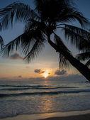 Sea sunrise in Koh Samui island — Stock Photo
