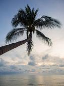 Sea sunrise in Koh Samui island — Stock fotografie