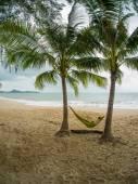 Girl lies on hammock on the beach — Stock Photo