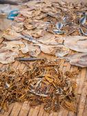 The fish market in Jimbaran Bali  — Stock Photo