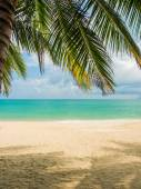 Tropical beach of Koh Samui island — Stock Photo