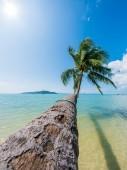 Tropical beach of Koh Samui island — Stock Photo
