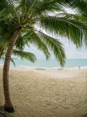 Landscape of Koh Samui island  — Foto de Stock