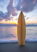 Surfbrett am Strand bei Sonnenuntergang — Stockfoto