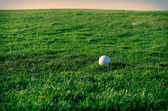 Golf course at sunset — Stock Photo
