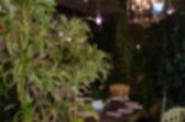 Restaurant blur background — ストック写真