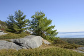 View from Mount Battie in Camden Maine — Stock fotografie