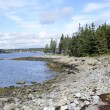 Rocky Maine coast — Stock Photo #57776731