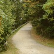 Gravel path in woods — Stock Photo #57776759