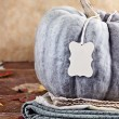 Green Pumpkin with Blank Tag — Stock Photo #57731983