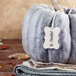 Green Pumpkin with Tag — Stock Photo #57734987