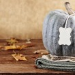 Green Pumpkin with Tag and Copy Space — Stock Photo #57735107