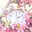 Spring Daylight Savings Time — Zdjęcie stockowe #59977175