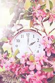 Spring Daylight Savings Time — Stock Photo