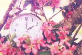 Springtime Daylight Savings Time — Zdjęcie stockowe